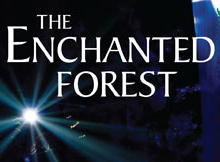Enchanted forest - Pitlochry B&B